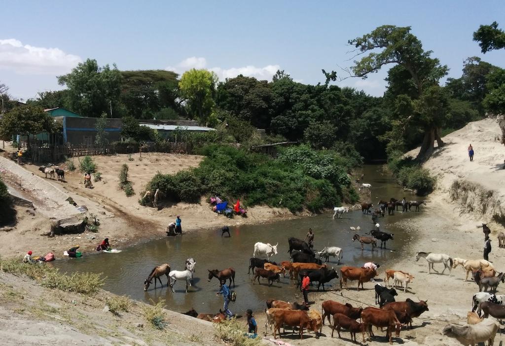 Wasserstelle1