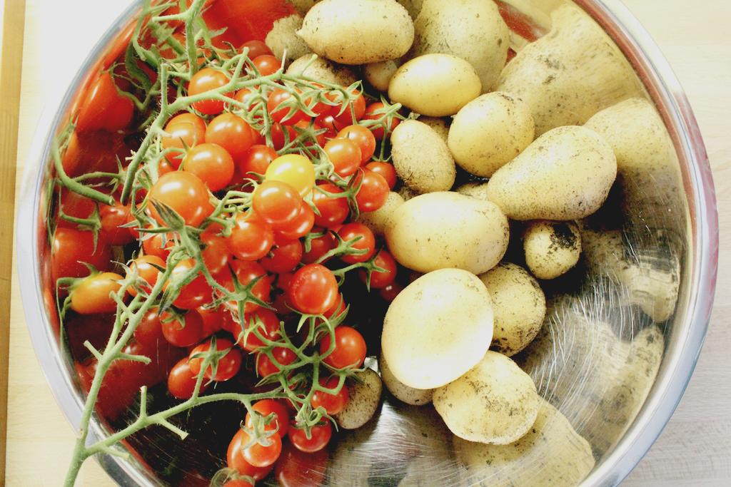 Tomaten_Kartoffeln Kopie