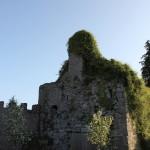 Castlemartyr4