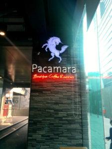 Pacamara9